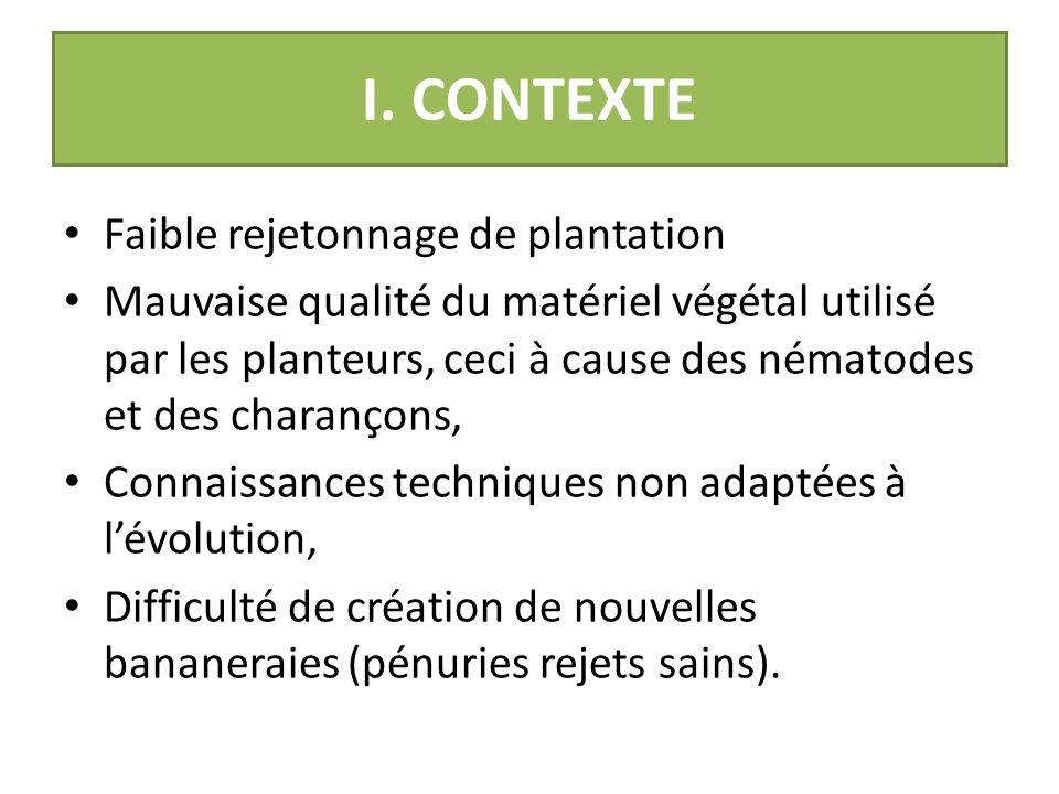 I. CONTEXTE Faible rejetonnage de plantation