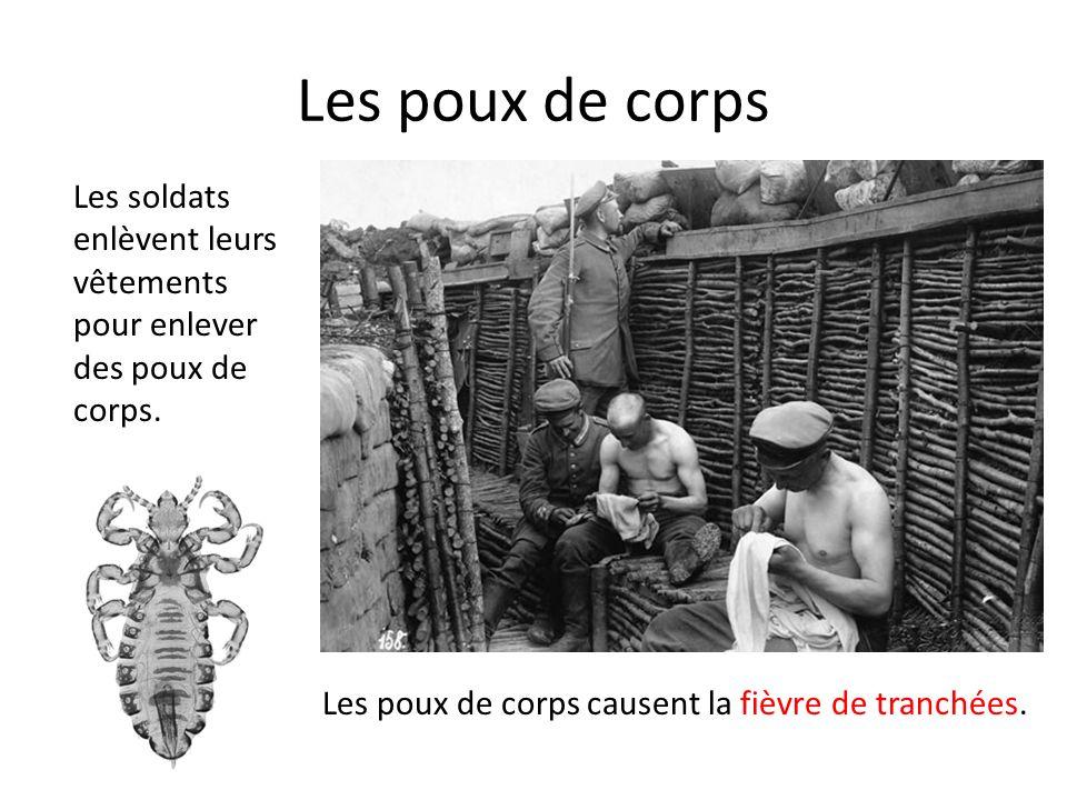 Les poux de corps Les soldats enlèvent leurs vêtements pour enlever des poux de corps.