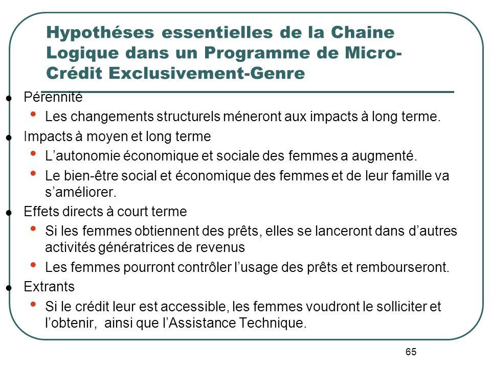 Hypothéses essentielles de la Chaine Logique dans un Programme de Micro-Crédit Exclusivement-Genre