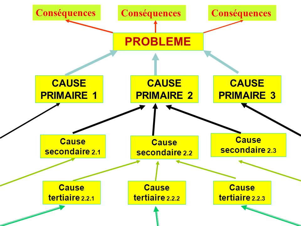 PROBLEME Conséquences Conséquences Conséquences CAUSE PRIMAIRE 1