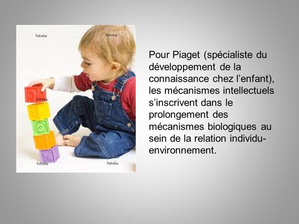 Pour Piaget (spécialiste du développement de la connaissance chez l'enfant), les mécanismes intellectuels s'inscrivent dans le prolongement des mécanismes biologiques au sein de la relation individu-environnement.