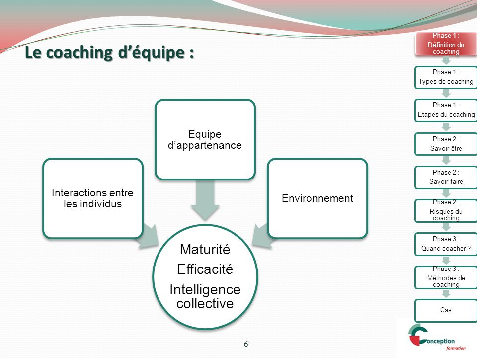 Le coaching d'équipe : Maturité Efficacité Intelligence collective