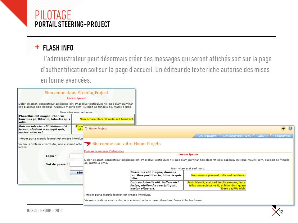 Pilotage Portail Steering-Project Flash info