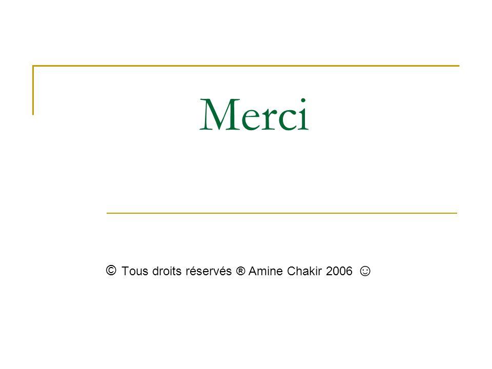 © Tous droits réservés ® Amine Chakir 2006 ☺