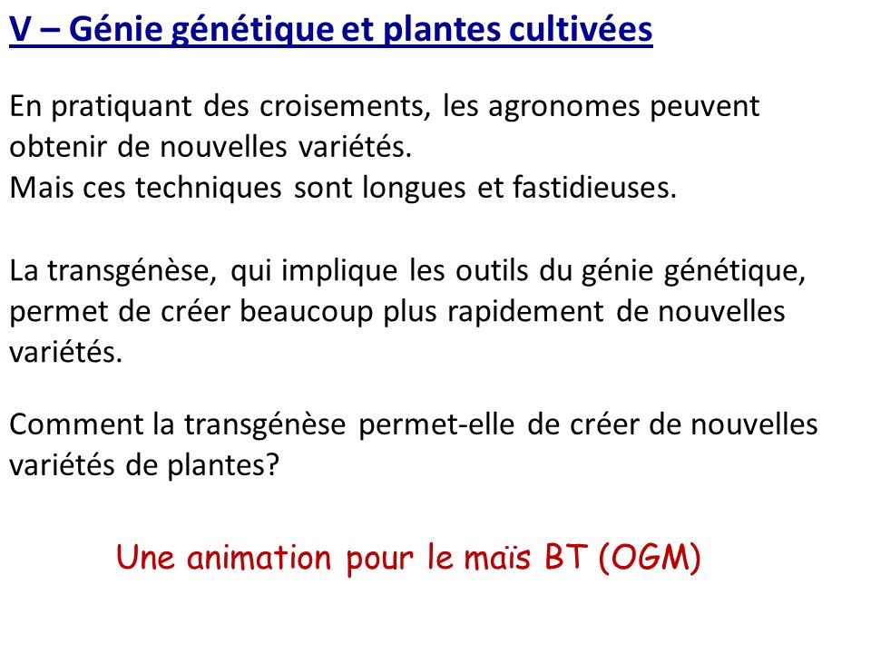 V – Génie génétique et plantes cultivées