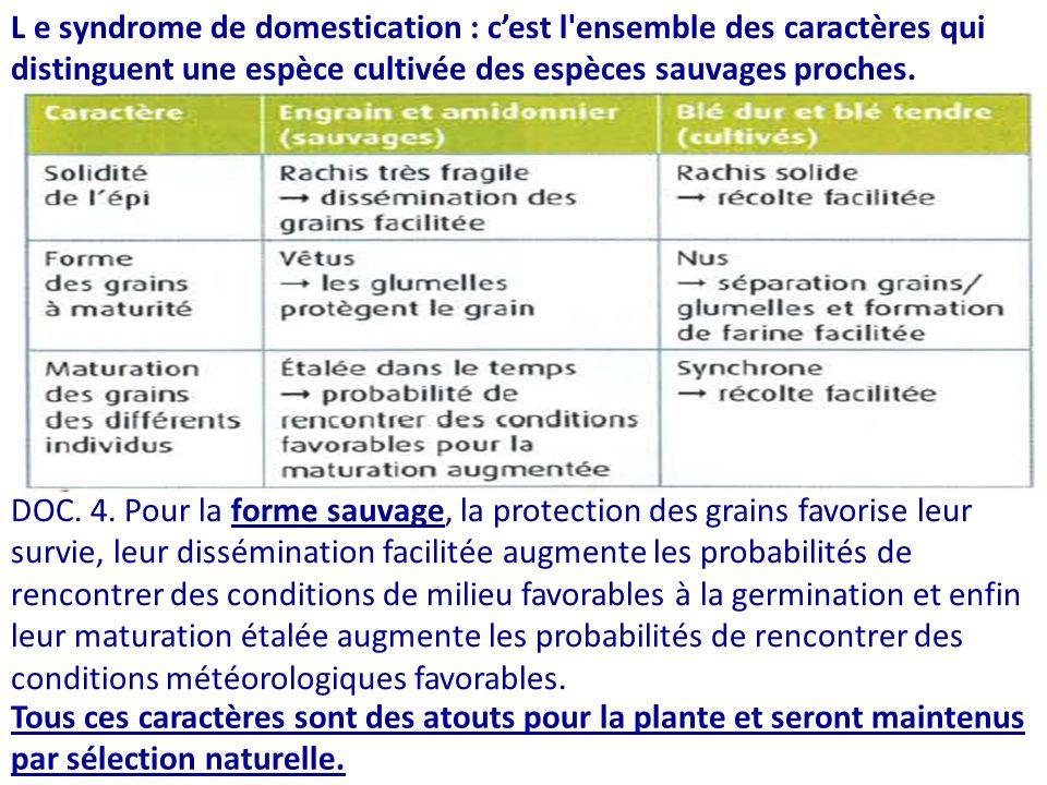 L e syndrome de domestication : c'est l ensemble des caractères qui distinguent une espèce cultivée des espèces sauvages proches.