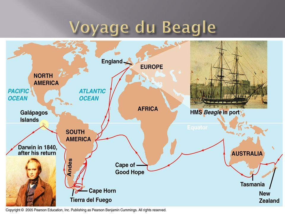 Voyage du Beagle