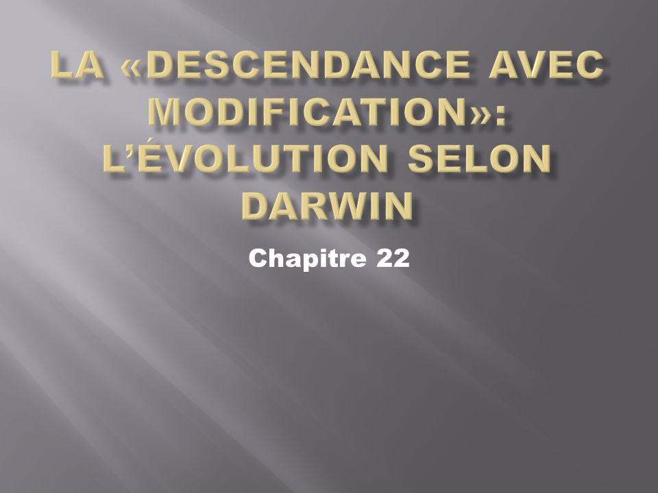 La «descendance avec modification»: L'évolution selon Darwin