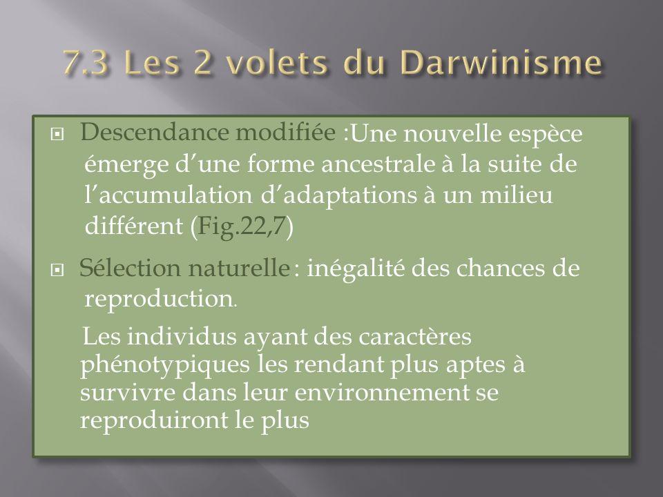 7.3 Les 2 volets du Darwinisme