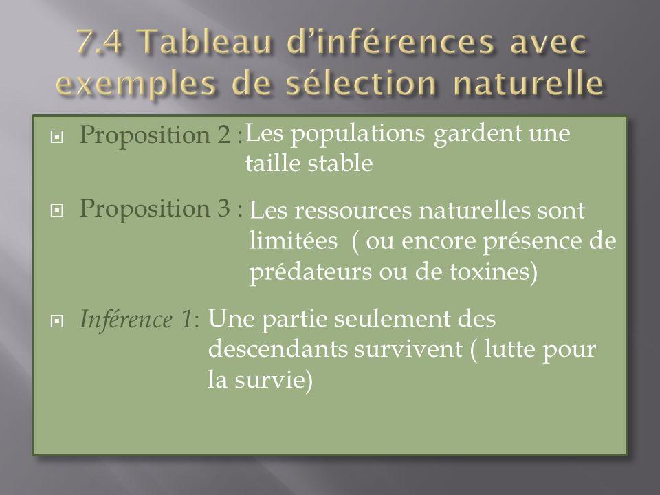 7.4 Tableau d'inférences avec exemples de sélection naturelle