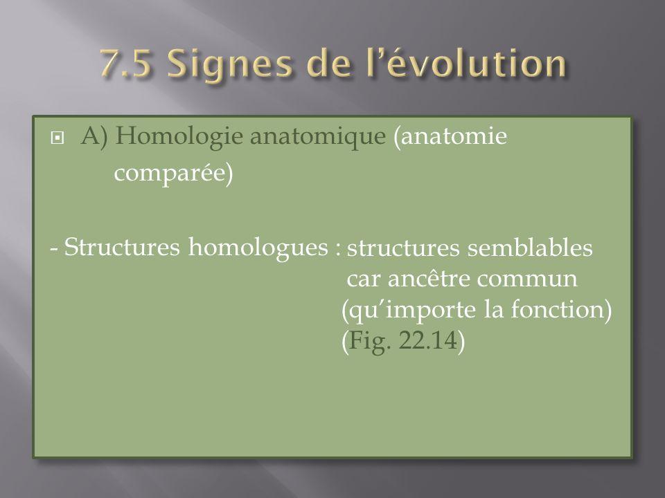 7.5 Signes de l'évolution A) Homologie anatomique (anatomie comparée)