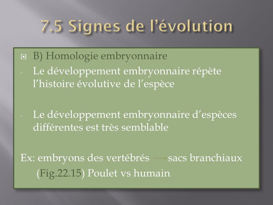 7.5 Signes de l'évolution B) Homologie embryonnaire