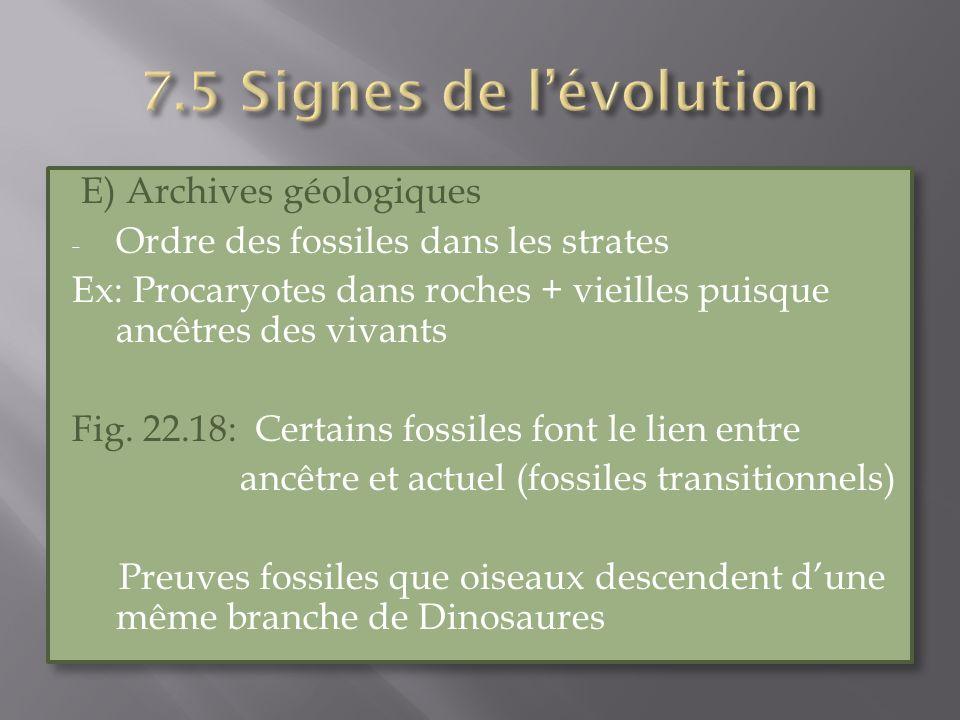 7.5 Signes de l'évolution E) Archives géologiques