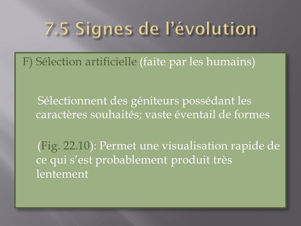 7.5 Signes de l'évolution