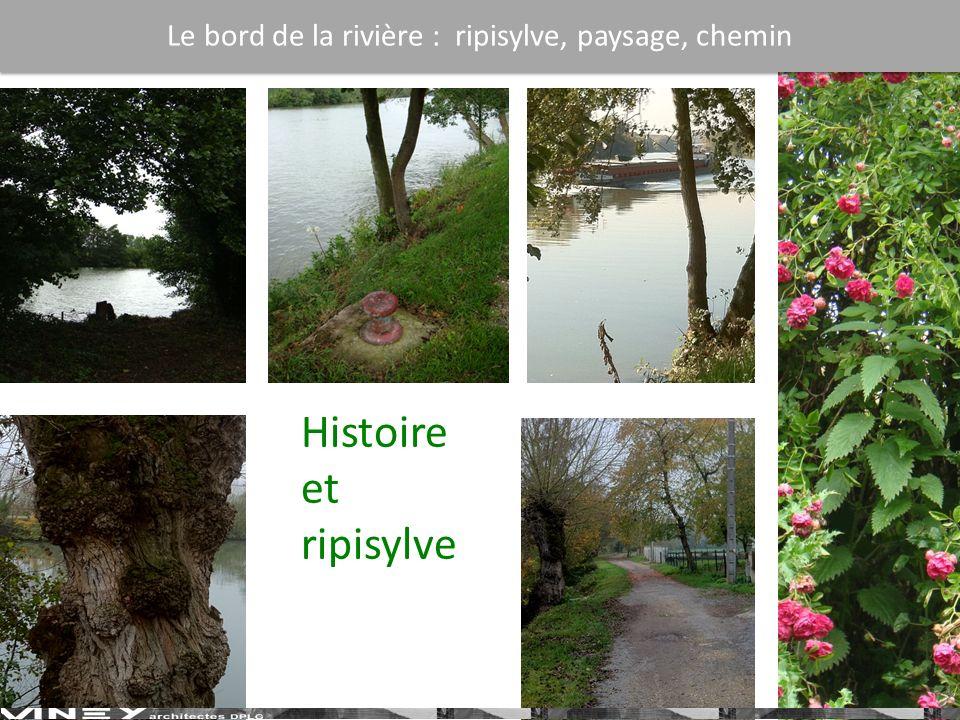 Le bord de la rivière : ripisylve, paysage, chemin