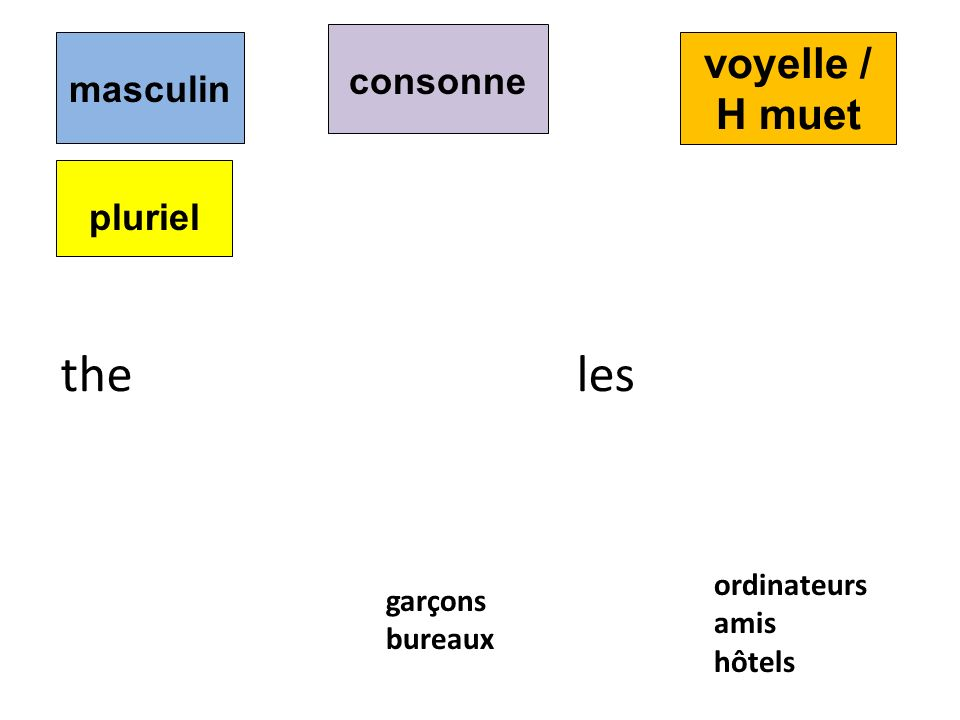 the les voyelle / H muet consonne masculin pluriel ordinateurs garçons