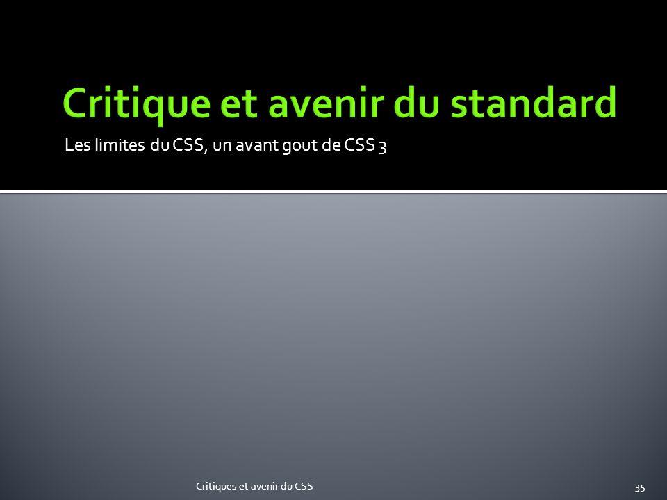 Critique et avenir du standard