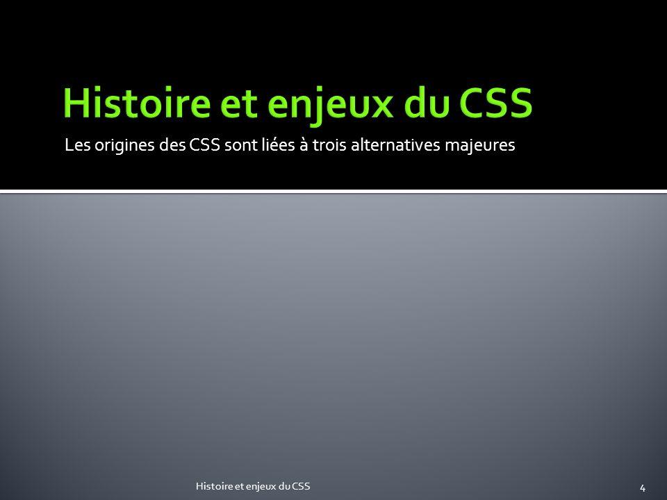 Histoire et enjeux du CSS