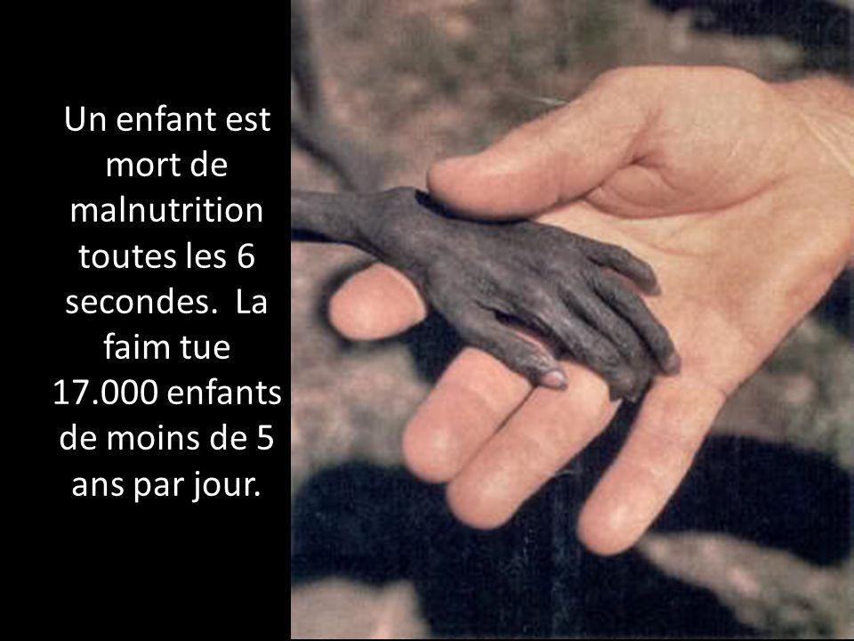 Un enfant est mort de malnutrition toutes les 6 secondes
