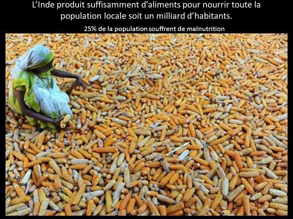L'Inde produit suffisamment d'aliments pour nourrir toute la population locale soit un milliard d'habitants.