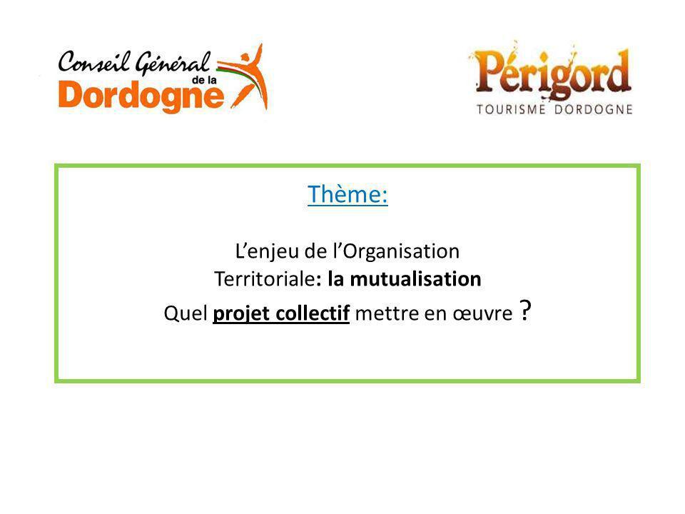 Thème: L'enjeu de l'Organisation Territoriale: la mutualisation Quel projet collectif mettre en œuvre