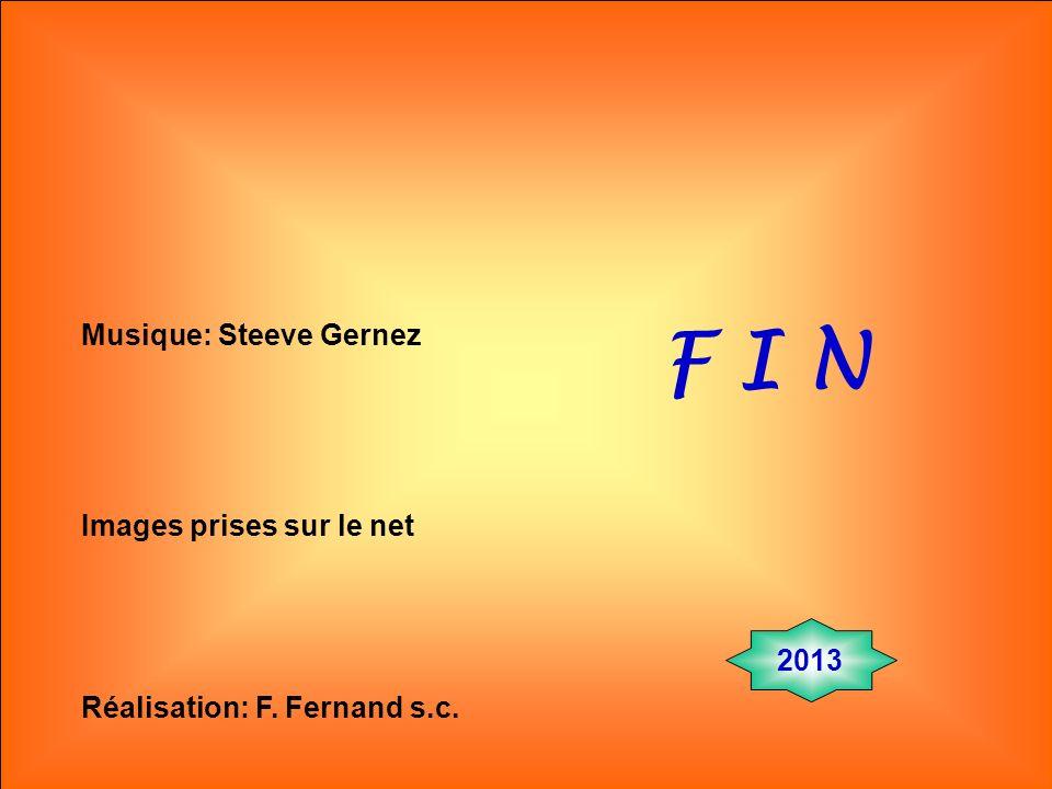 F I N Musique: Steeve Gernez Images prises sur le net 2013