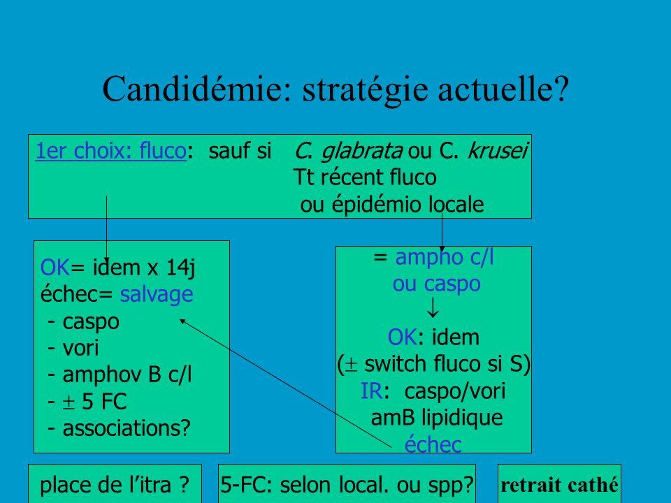 Candidémie: stratégie actuelle