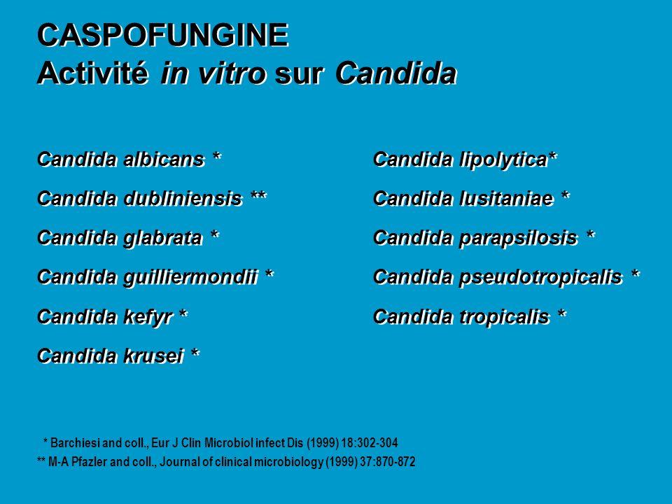 Activité in vitro sur Candida
