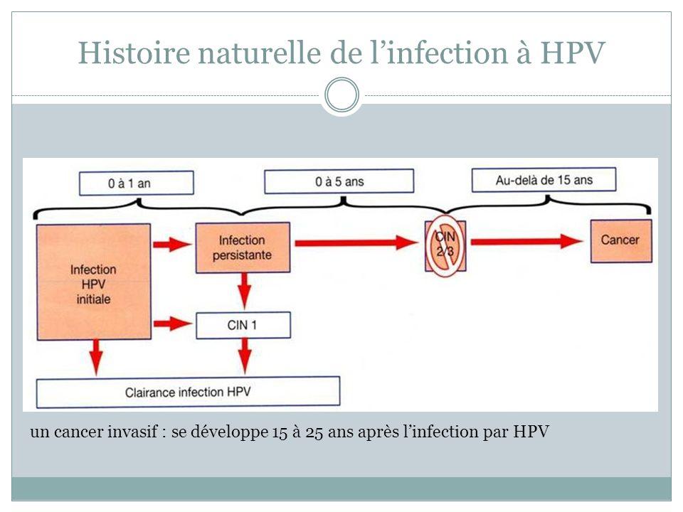 Histoire naturelle de l'infection à HPV