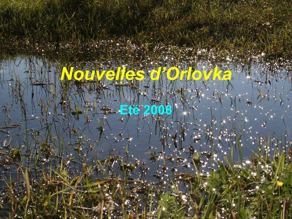 Nouvelles d'Orlovka Eté 2008
