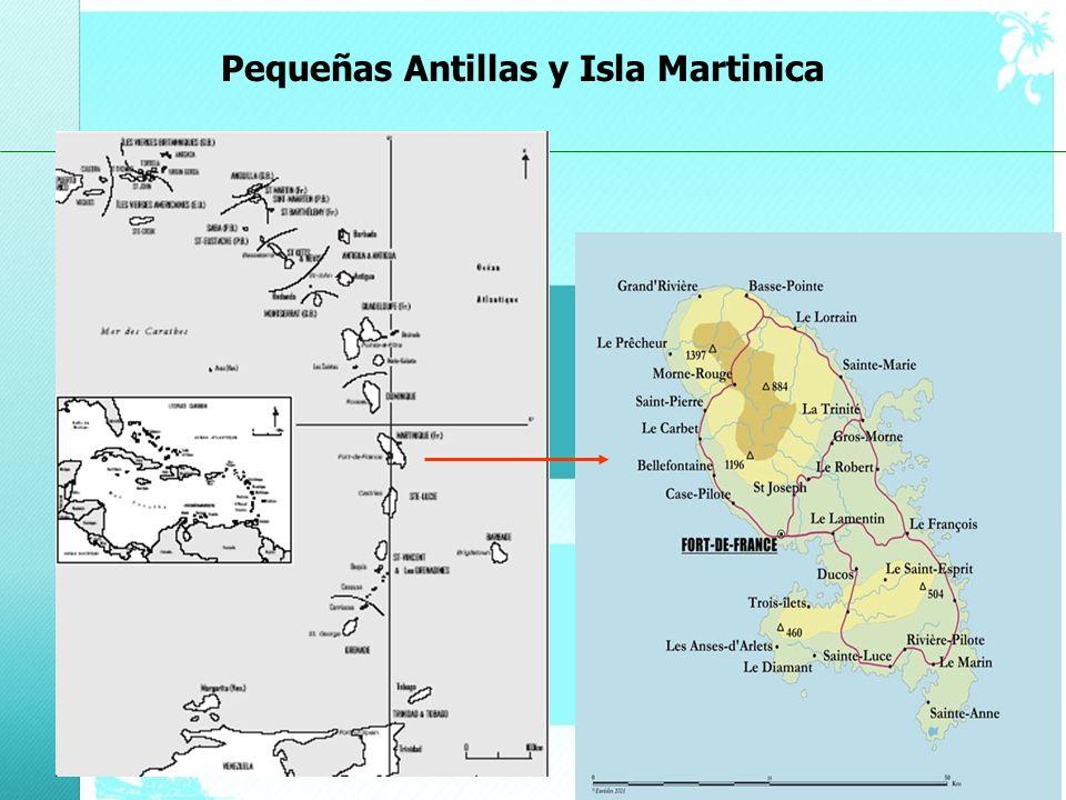Pequeñas Antillas y Isla Martinica