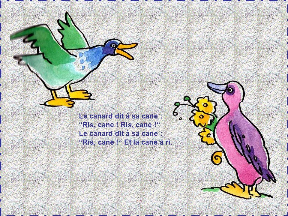 Le canard dit à sa cane : Ris, cane ! Ris, cane ! Ris, cane ! Et la cane a ri.