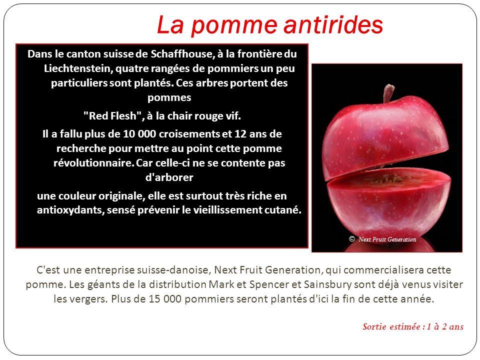 La pomme antirides