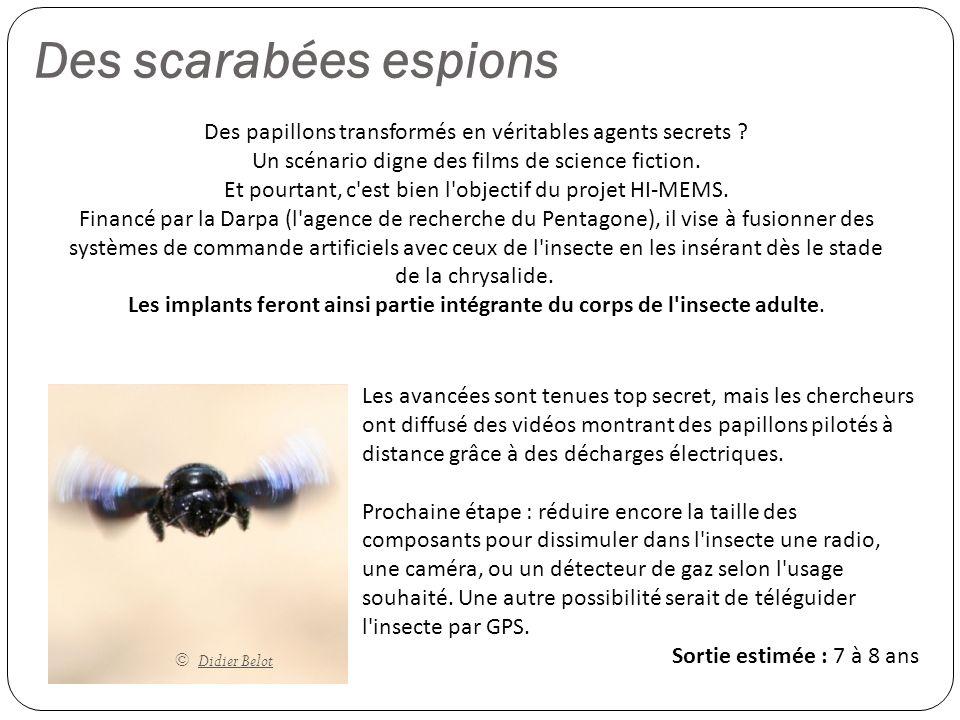 Des scarabées espions Des papillons transformés en véritables agents secrets Un scénario digne des films de science fiction.
