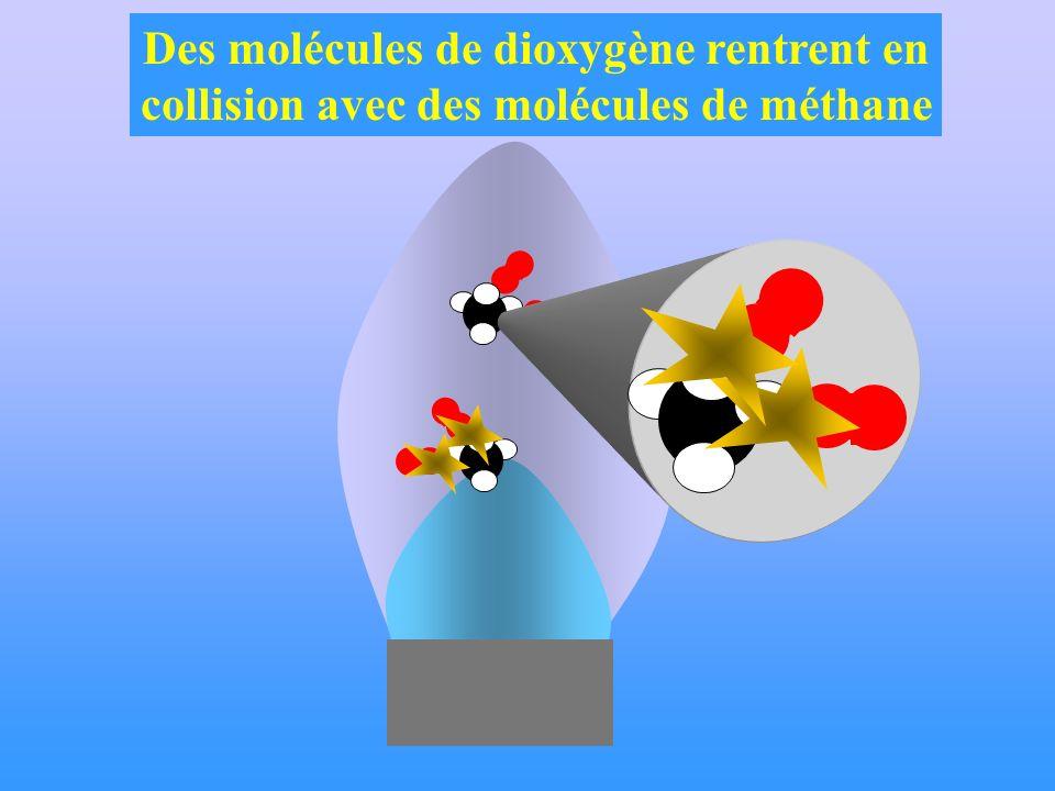 Des molécules de dioxygène rentrent en