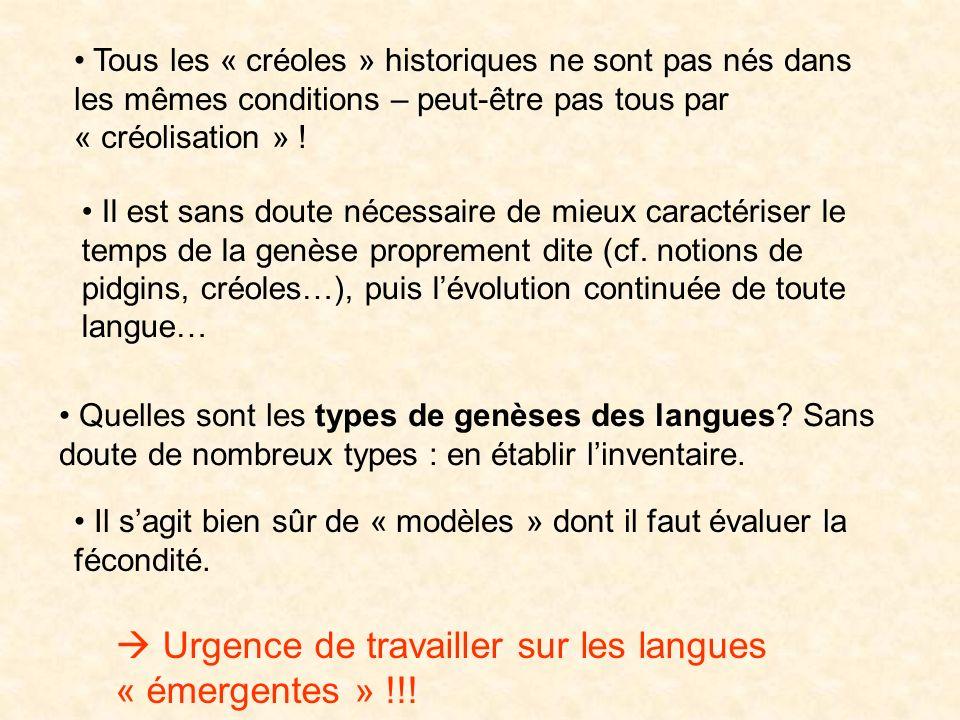  Urgence de travailler sur les langues « émergentes » !!!