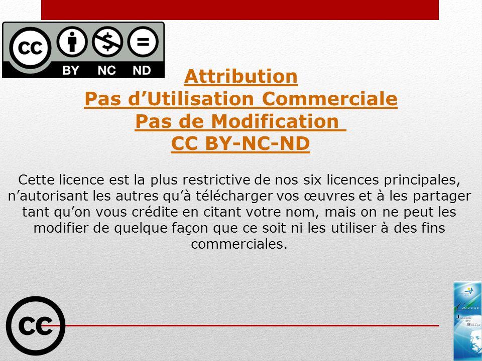 Pas d'Utilisation Commerciale Pas de Modification CC BY-NC-ND