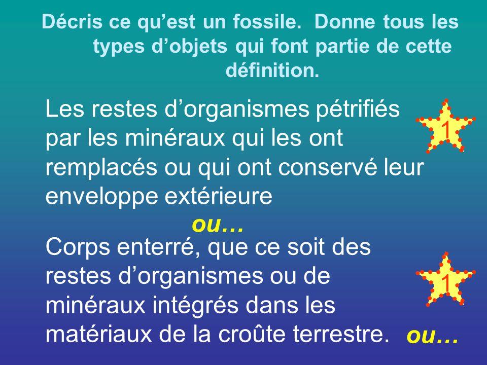 Décris ce qu'est un fossile
