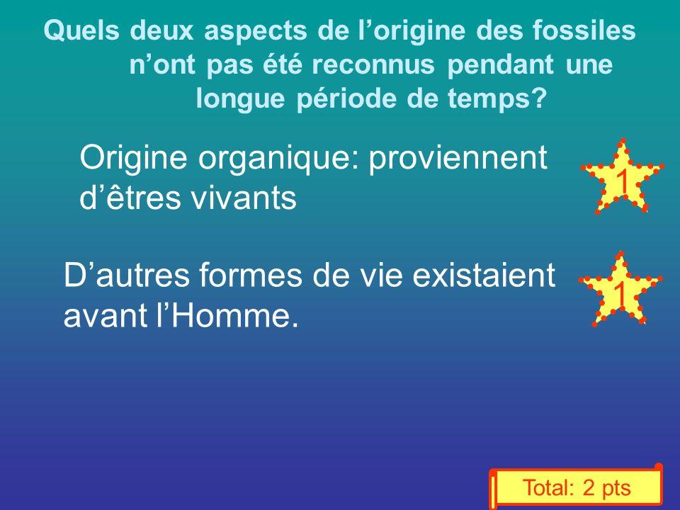 Origine organique: proviennent d'êtres vivants 1