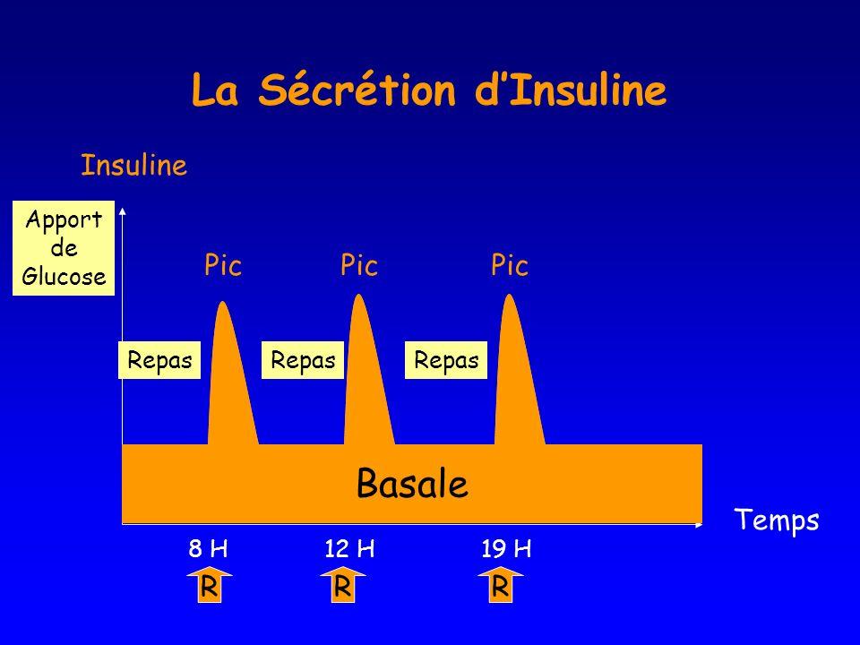 La Sécrétion d'Insuline