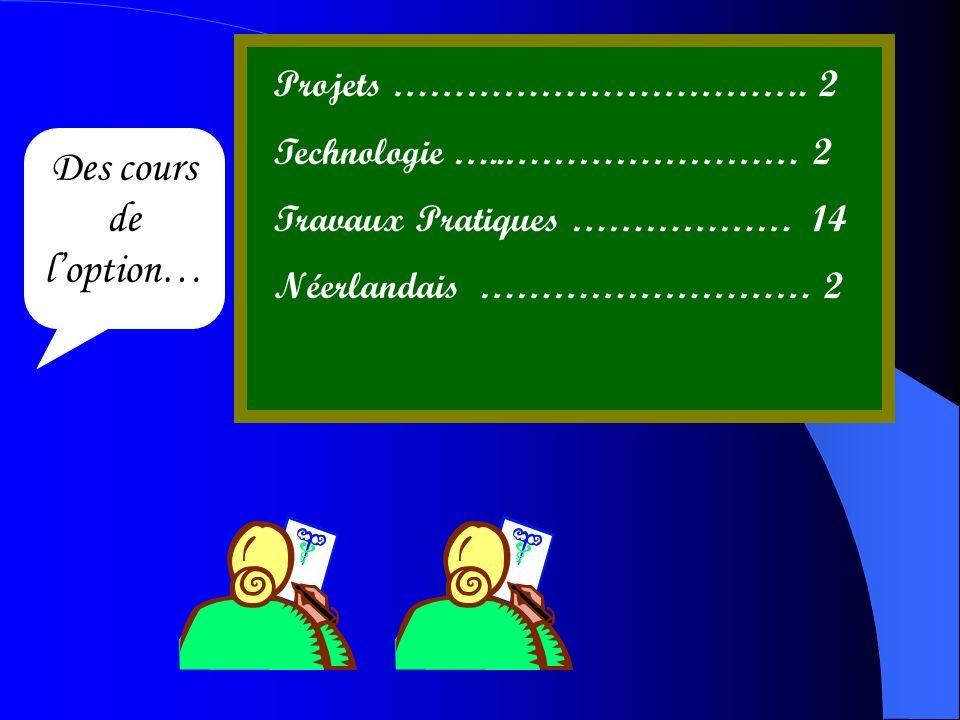 Des cours de l'option… Projets ……………………………. 2