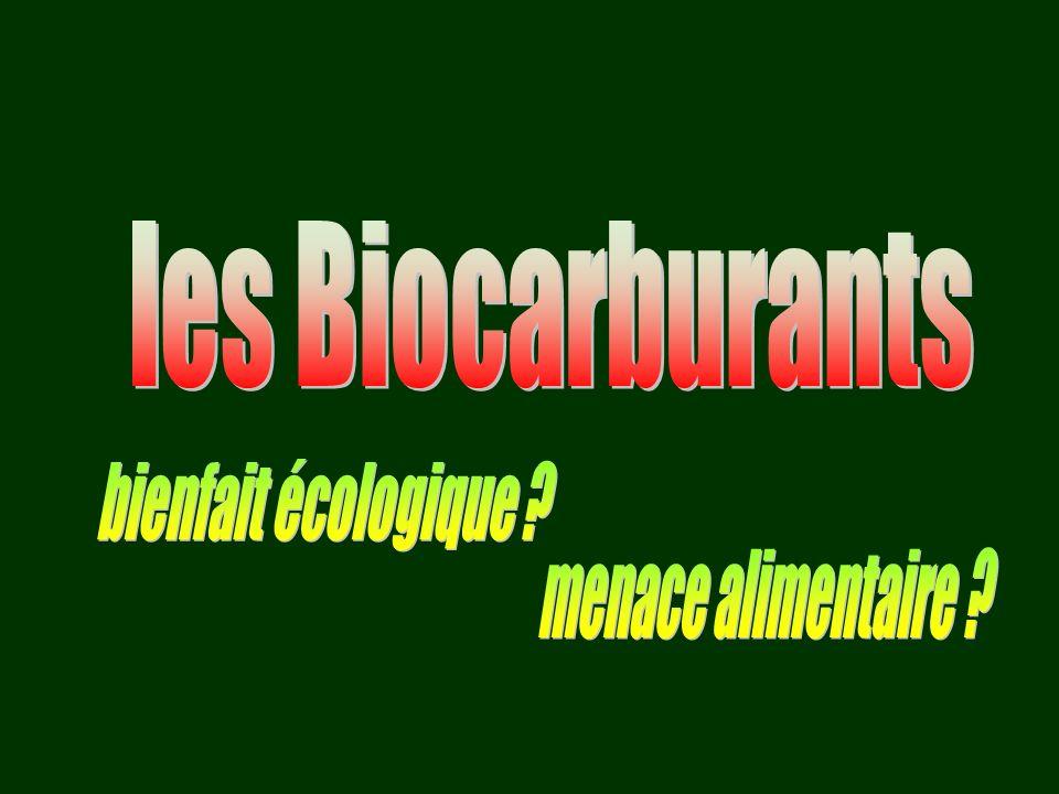les Biocarburants bienfait écologique menace alimentaire