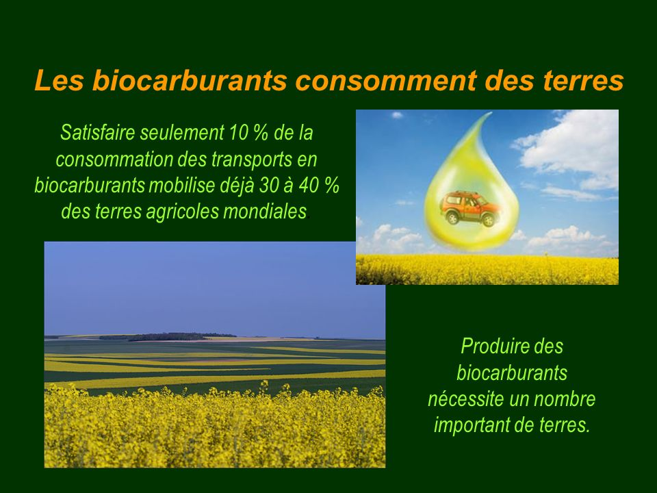 Les biocarburants consomment des terres