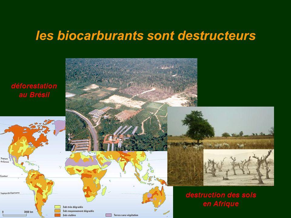 les biocarburants sont destructeurs