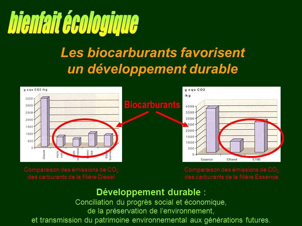 Les biocarburants favorisent un développement durable