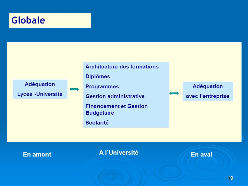 Globale A l'Université En amont En aval Architecture des formations