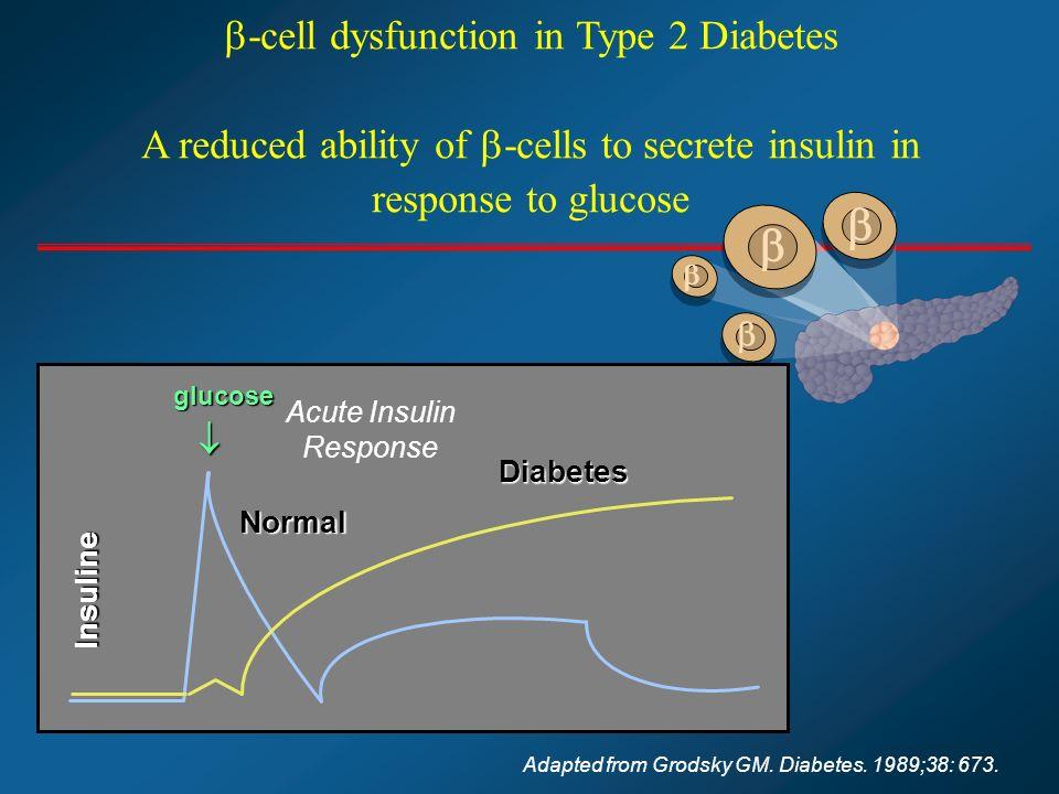 Acute Insulin Response