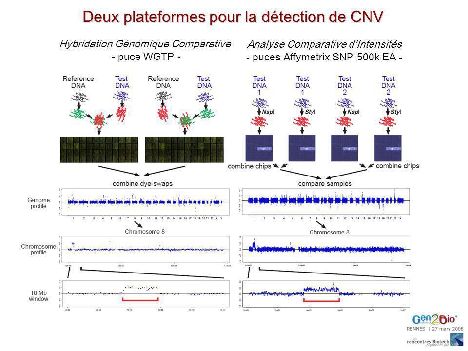 Deux plateformes pour la détection de CNV