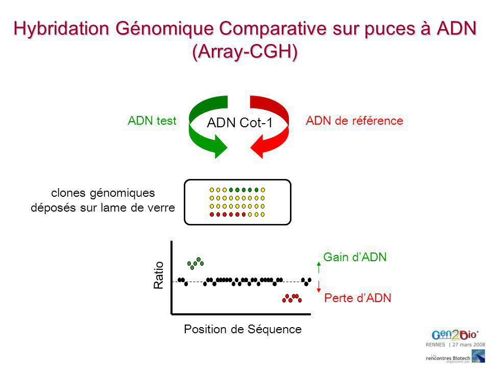 Hybridation Génomique Comparative sur puces à ADN (Array-CGH)