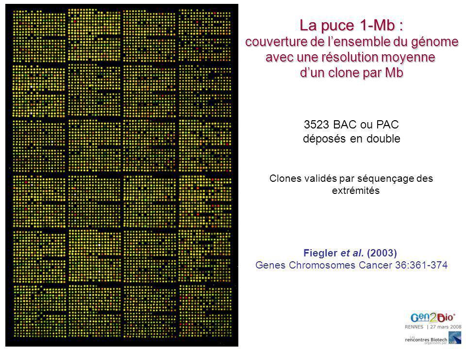 La puce 1-Mb : couverture de l'ensemble du génome